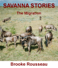 savanna book cover